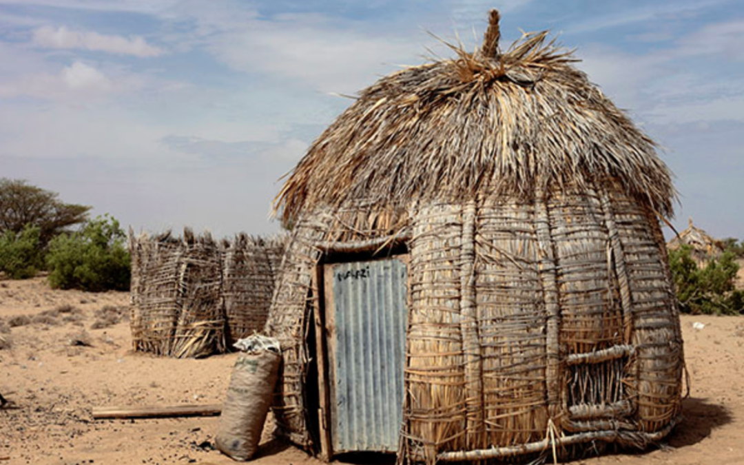 The Palm-Frond Huts of Turkana: Not-So-Simple Structures